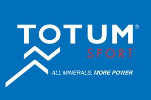 logo TOTUM